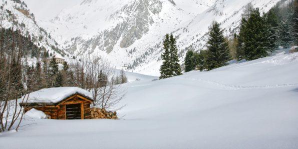 221.l'orgere hiver aiguille doran60x120