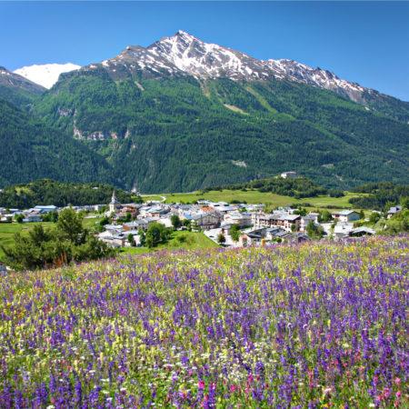 Haute maurienne vanoise parc national de la vanoise savoie mont blanc val cenis aussois