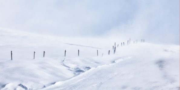 38.blizzard mont-cenis 160×120