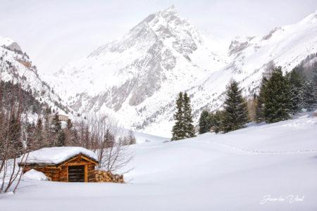 orgère parc national de la vanoise haute maurienne vanoise savoie mont blanc